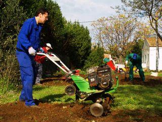 20111214_Jardineria_Denia